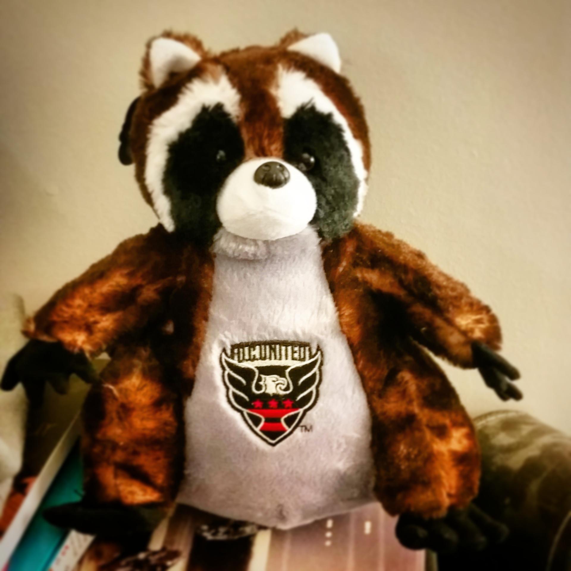 DC United raccoon