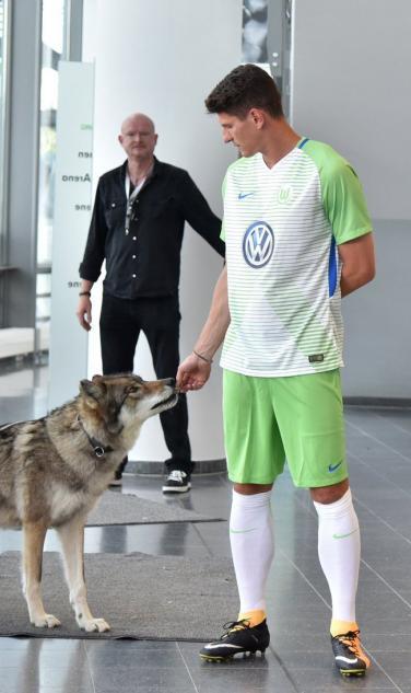 Mario Gomez With Wolf