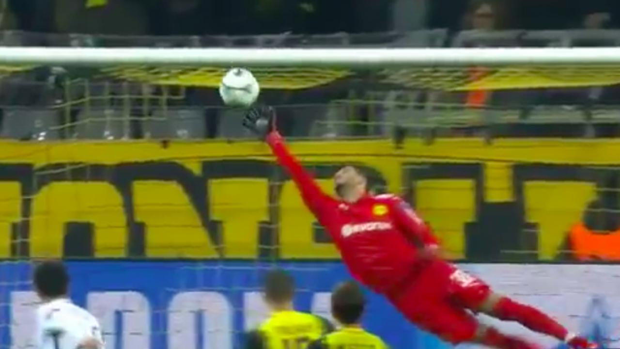 Roman Burki save vs Tottenham