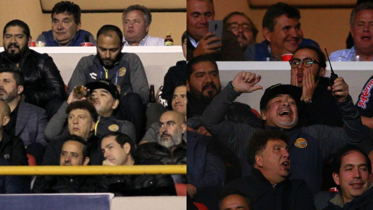 Diego Maradona Dorados