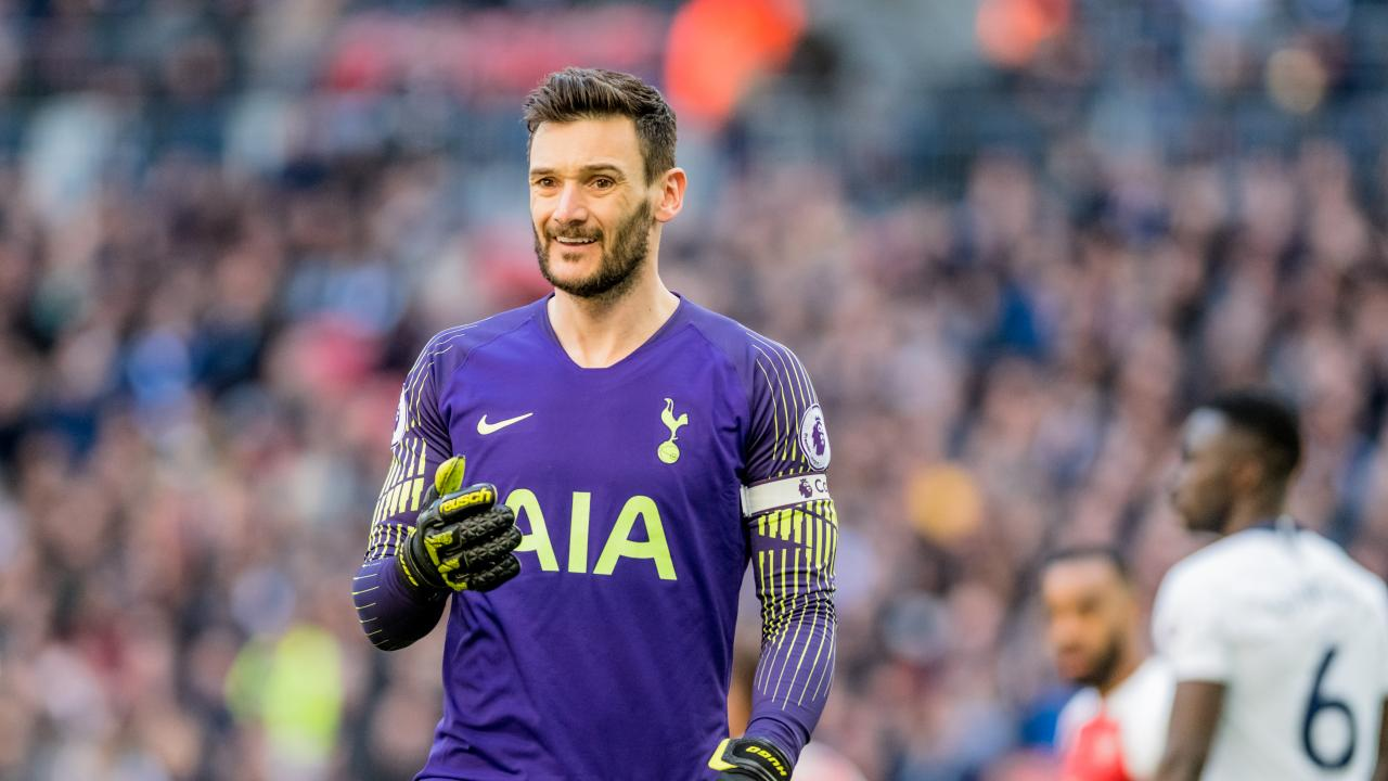 Hugo Lloris Petition