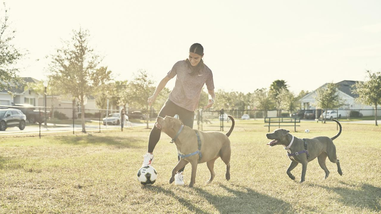 Alex Morgan Dogs Kona and Blue