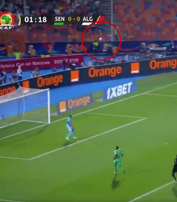 2019 AfCoN Final Highlights
