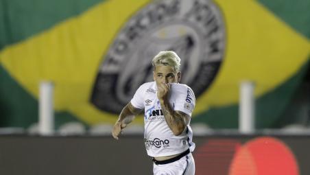 Santos advance to Copa Libertadores final