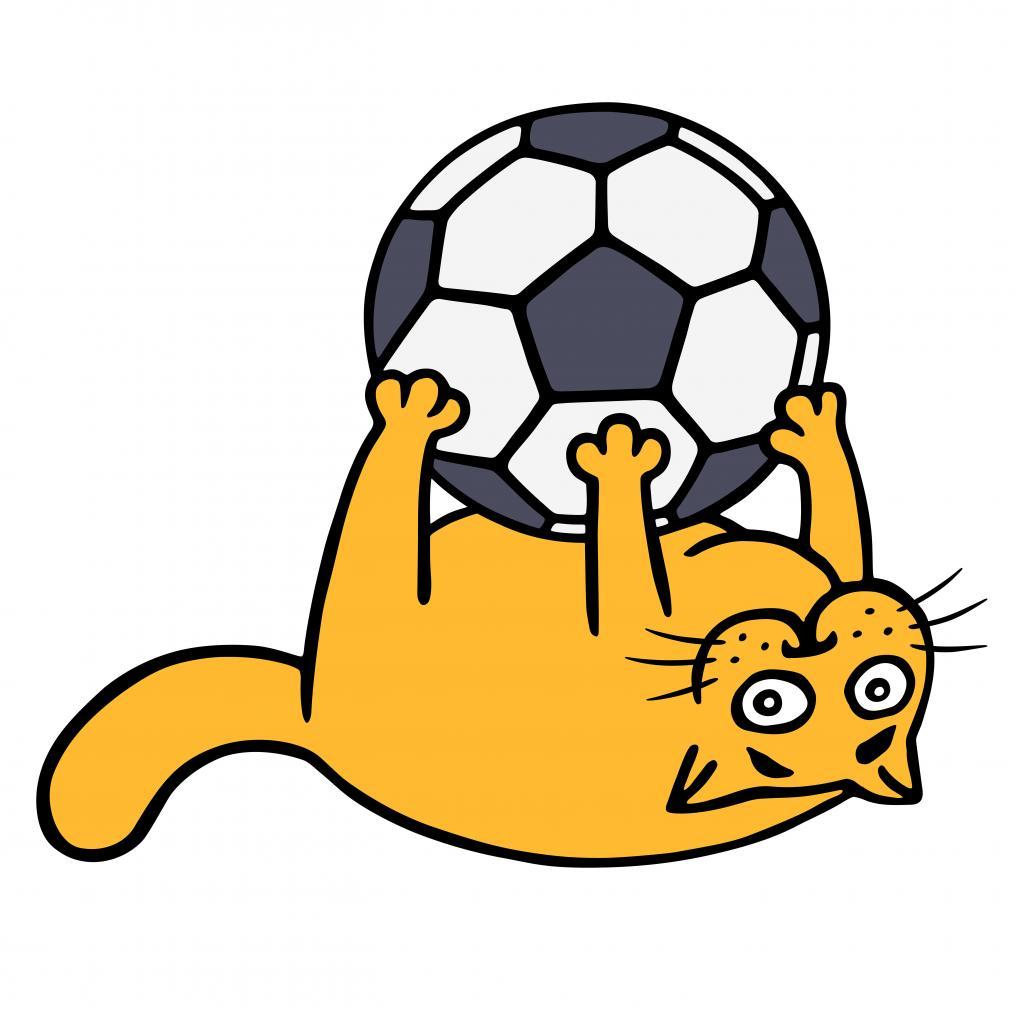 Soccer Cat Orange