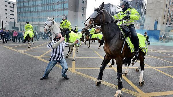 Newcastle United fan punches a horse