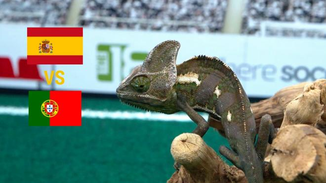 Spain Portugal Prediction