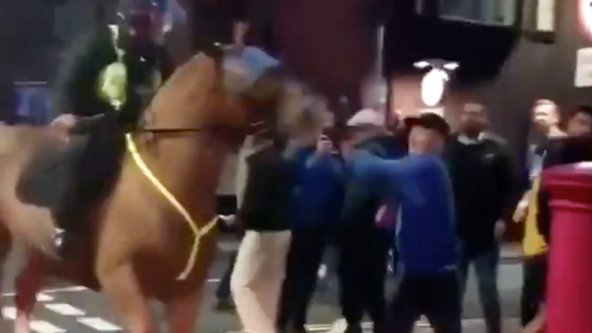 Portsmouth Fan Punches Police Horse