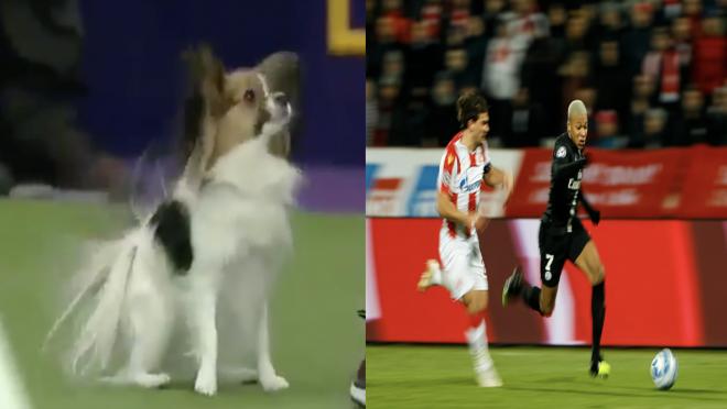 Gabby vs Mbappe