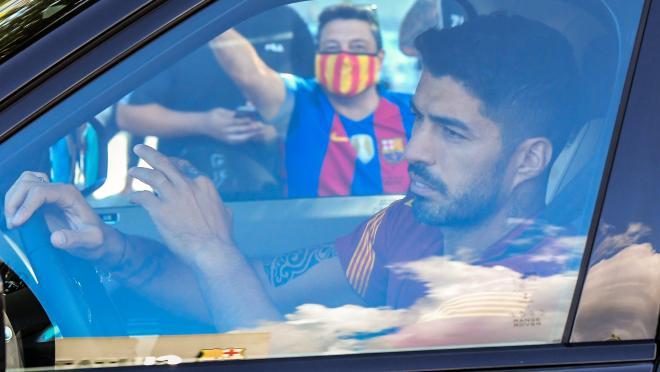 Luis Suarez Atletico transfer