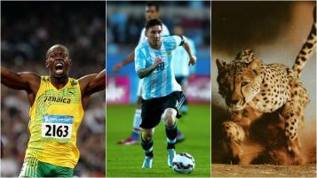 Usain Bolt, Then Messi, Then an Cheetah.