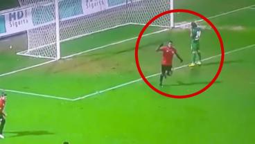 Defender Makes Incredible Goal-Line Kick Save And Celebrates Accordingly