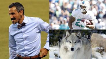 Pablo Mastroeni, Arian Foster and a wolf.