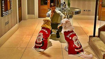 Alexis Sanchez Got The Christmas Decorations Out Early For His Dogs