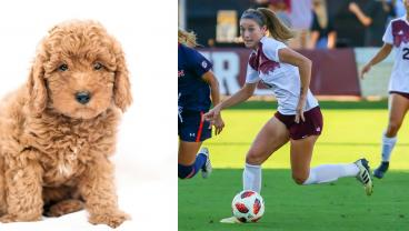 Texas A&M Midfielder Earns Puppy After Scoring A Golazo