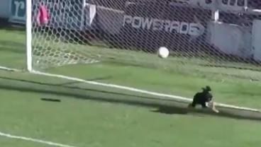 Oh What A Save By The Doggo