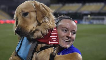 USWNT Does Meet And Greet With Pack Of Good, Helpful Dogs