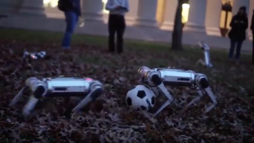 Watch This Army Of Back-Flipping 'Mini Cheetah' Robots Playing Soccer And Never Sleep Again