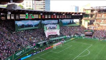 Portland Timbers Finally Return Home To Reopen The Gorgeous Providence Park