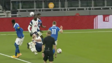 Incredible Scenes As Dolphins Return To Hotspur Stadium And Show Off Their Diving Skills