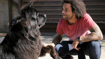 15 Footballers And Their Furry, Four-Legged Friends